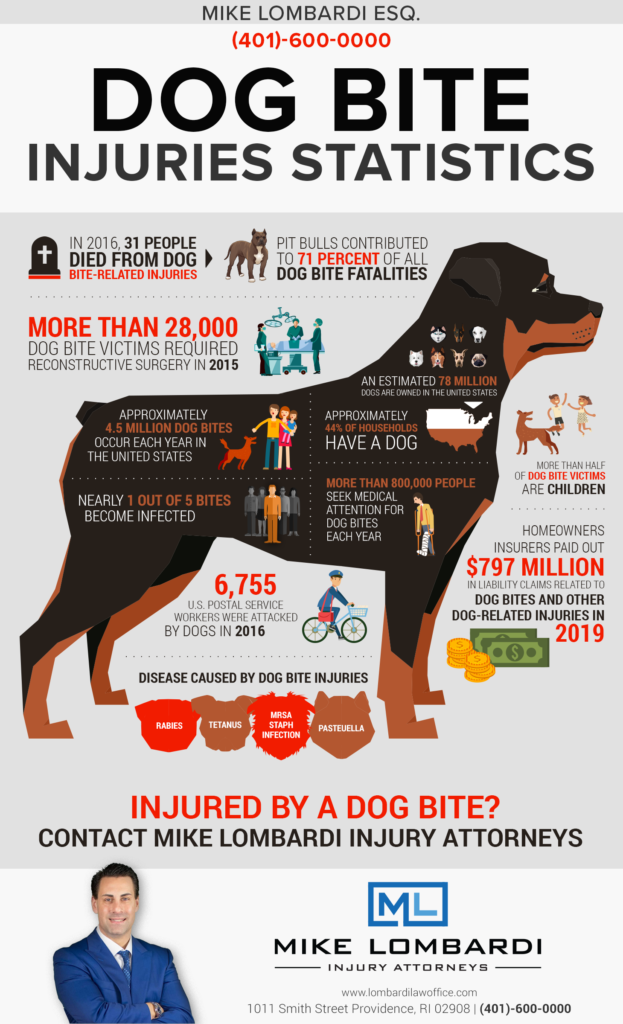 dog-bite-injury-infographic
